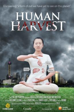 Human-harvest-flying-cloud-productions-peabody-winner-2014.jpg